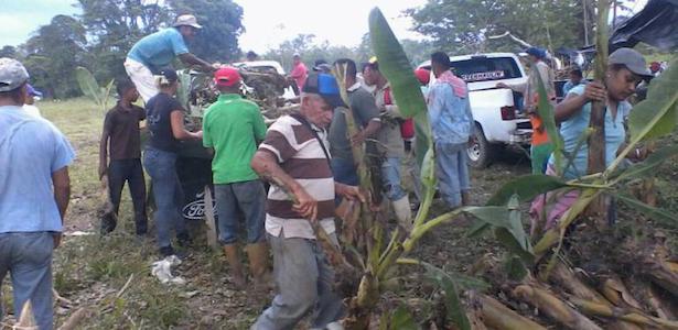 Venezuela: des paysans de Mérida récupèrent des terres