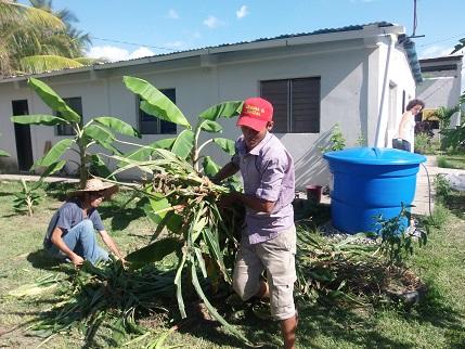 FAL 33: Chronique de quelques semaines d'ateliers solidaires de permaculture au Venezuela