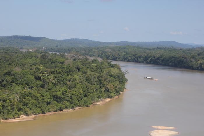 La forêt guyanaise menacée par les mines d'or
