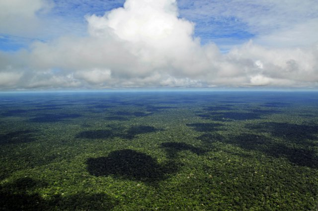 Des millions d'hectares de forêt amazonienne ouverts à l'exploitation minière