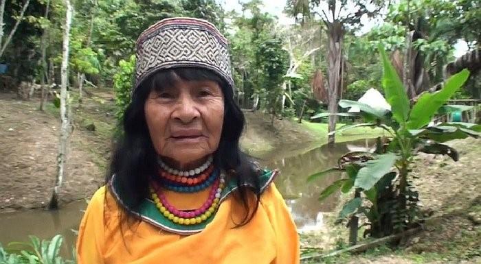 Communiqué: Assassinat d'Olivia Arévalo Lomas : solidarité avec le peuple Shipibo !