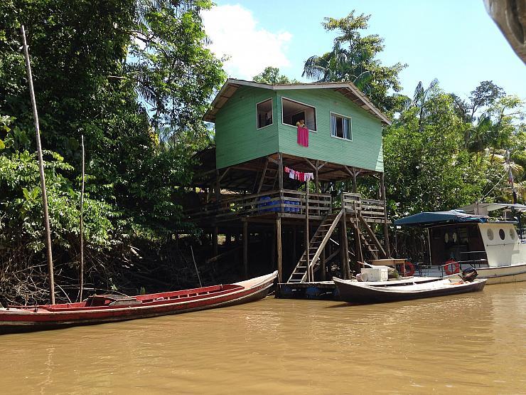 Brésil: comment des entreprises européennes sont liées à la déforestation illégale de l'Amazonie (Mathilde Dorcadie/ Bastamag)