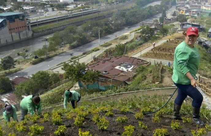 Les femmes, moteur de la métamorphose de la ville de Medellín en Colombie (Marie Delcas / Le Monde)