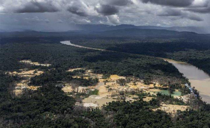Brésil : en Amazonie, le territoire des Yanomami est envahi par 20.000 chercheurs d'or (Reporterre)
