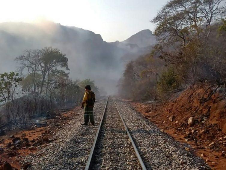 Au moins 750 000 hectares de forêt détruits par le feu en Bolivie (Amanda Chaparro/ Le Monde)