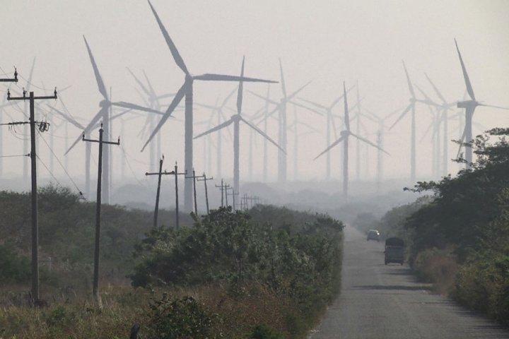 Le sale business des éoliennes d'EDF au Mexique (Allèssi Dell'Umbria / Reporterre)