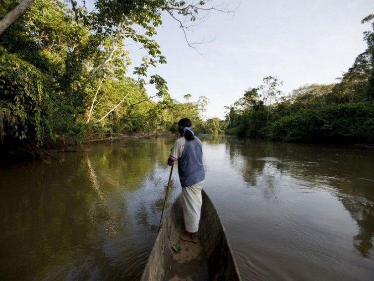 """Amazonie : appel des Amérindiens pour une """"alliance mondiale"""" contre l'exploitation pétrolière (Bruno Sat/ Outre-mer la 1ère)"""
