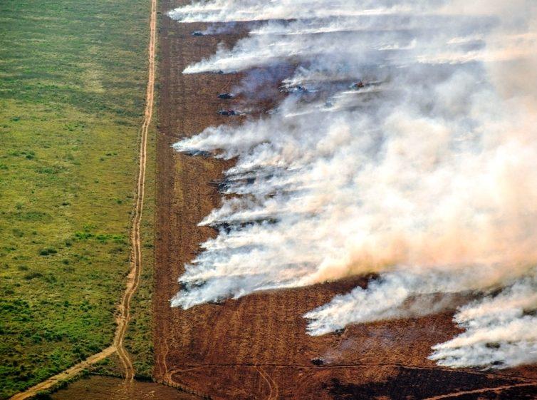 L'Amazonie brûle encore plus qu'à l'été 2019, la déforestation « importée » pointée du doigt (Annabelle Laurent / Usbeketrica) / Brésil : les feux reprennent, Bolsonaro les nie ( Aude Massiot / Libération)