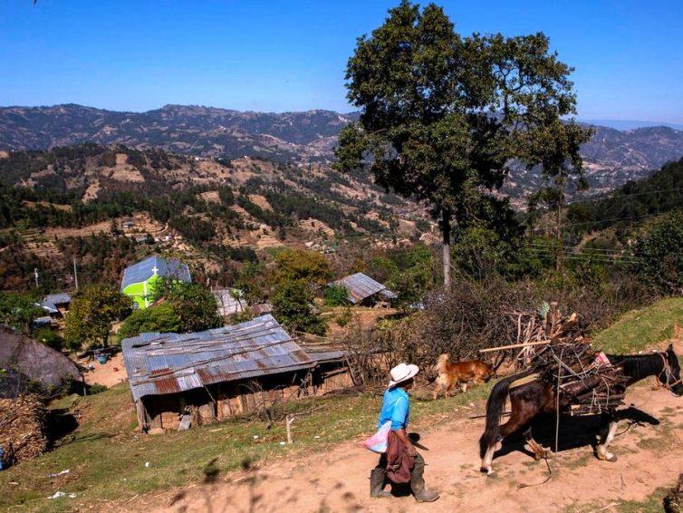 Massacre de migrants au Mexique: deux Guatémaltèques et deux Mexicains identifiés (RFI / AFP)